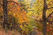 Fall color lines the banks of Nason Creek near Merritt, Washington.
