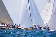 Northern Light, Heritage, and Weatherly, 12 Meter Class, sailing in the Opera House Cup Regatta.