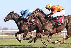 Kempton Park Races - 23 February 2019