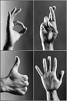 Four hands gesturing (b&w)
