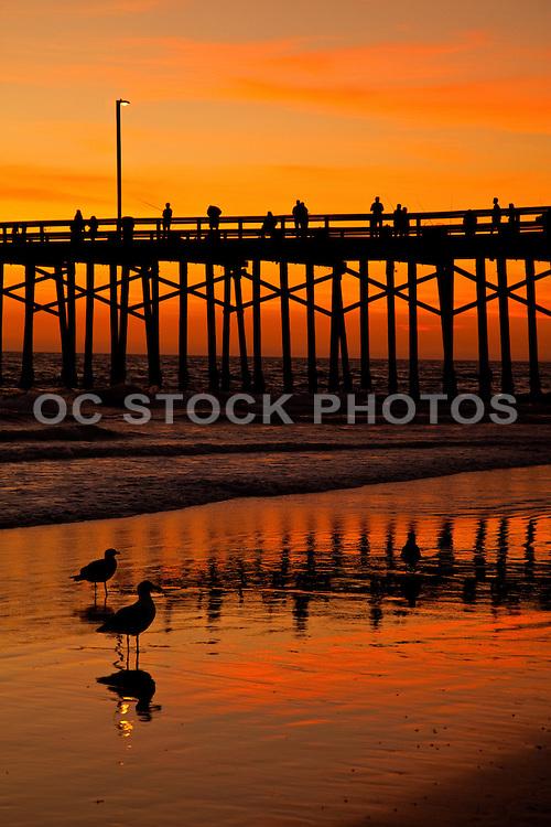 Newport Beach Pier at Sundown