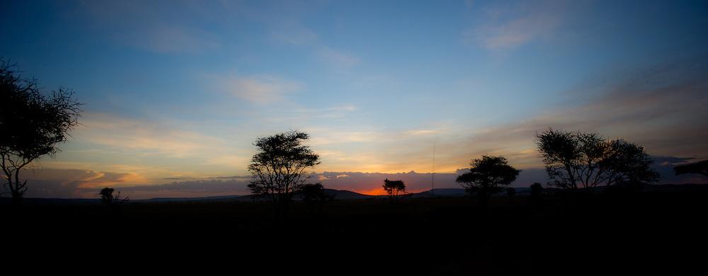 Sunset in Serengeti - panorama
