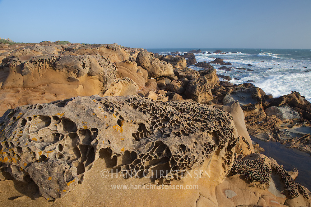 Wind and water sculpted sandstone creates an alien landscape along the headlands of Salt Point State Park, California