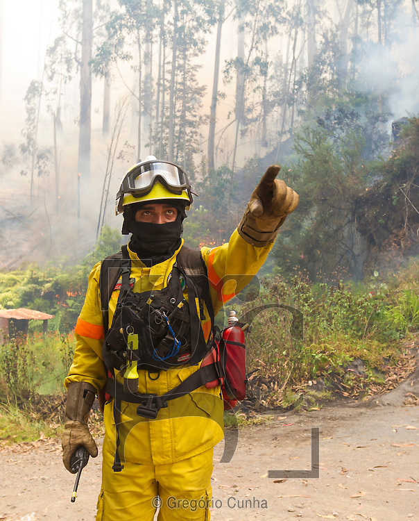 PORTUGAL, Porto Moniz : A fireman gestures as he works to extinguish a forest fire in Achadas da Cruz, close to Porto Moniz, on Madeira Island on July 20, 2012. Fires raged around the towns of Calheta, Ribeira Brava and in Santa Cruz, where one house was destroyed and a health centre, school and youth centre were evacuated as a precautionary measure. The problems began on the evening of July 18 when high temperatures and strong winds fanned a fire that broke out on the edge of the capital Funchal, gutting two houses and partially burning a third. PHOTO / GREGORIO CUNHA