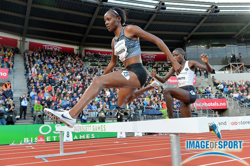 Beatrice  Chepkoech  (KEN) places second in the women's steeplechase in  9:04.30 during the 54th  Bislett Games in an IAAF Diamond League meet in Oslo, Norway, Thursday, June 13, 2019. (Jiro Mochizuki/Image of Sport)
