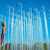 """Artist Iñigo Manglano-Ovalle makes some adjustment on his public art installation entitled """"Weather Field No.1,"""" (2013) at Tongva Park on Friday, October 18, 2013. The installation features 49 stainless steel poles each supporting a weather vane and an anemometer, alternating heights of 19, 20 and 21 feet."""