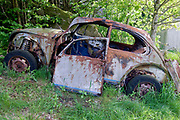 Wrecked Volkswagen left in the forest.