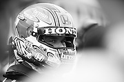 November 16-20, 2016: Macau Grand Prix. Tiago MONTEIRO, Honda Civic