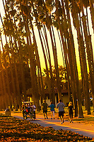 Tourists pedaling a surrey on a path between Cabrillo Boulevard and East Beach, Santa Barbara, California USA.