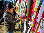 PAJU, GYEONGGI, SOUTH KOREA: A South Korean girl hangs a prayer flag on a fence near the northernmost point on the South Korean side of the Korean DMZ in Imjingak. Imjingak is a park and greenspace in South Korea that is farthest north most people can go without military authorization. The park is on the south bank of Imjin River, which separates South Korea from North Korea and is on the edge of the DMZ. Tourism to the Korean DeMilitarized Zone (DMZ) has increased as the pace of talks between South Korea, North Korea and the United States has increased. Some tours are sold out days in advance.      PHOTO BY JACK KURTZ