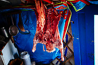 A goat carcass hangs in a traditional family ger near Khovsgol Lake in northern Mongolia.