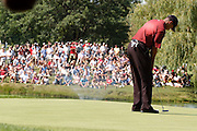 Jul 31, 2005; Grand Blanc, MI, USA; Tiger Woods putts for birdie on the thirtheenth hole as a large gallery wathes from acroos the pond during the final round of the 2005 Buick Open at the Warwick Hills Golf and Country Club. Copyright © 2005 Kevin Johnston