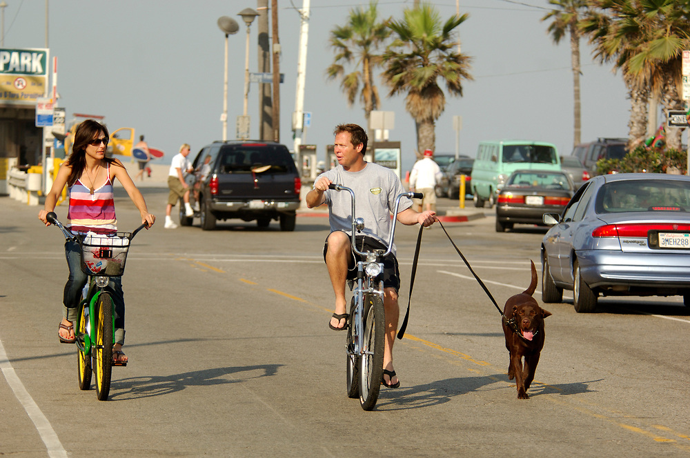 Dog Biking, Venice Beach, Venice, Los Angeles, California, United States of America