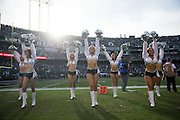 The Oakland Raiderettes perform on the sidelines during a NFL game between the Oakland Raiders and the Buffalo Bills at Oakland Coliseum in Oakland, Calif., on December 4, 2016. (Stan Olszewski/Special to S.F. Examiner)