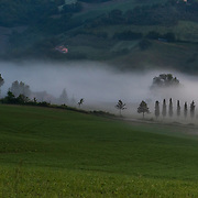 Morning Fog in Le Marche