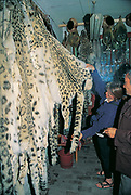 Snow leopard skins for sale, Kashgar, far westrn China, Central Asia