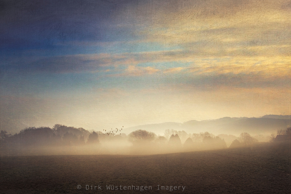 Rural landscape in morning mist at sunrise - textured photograph