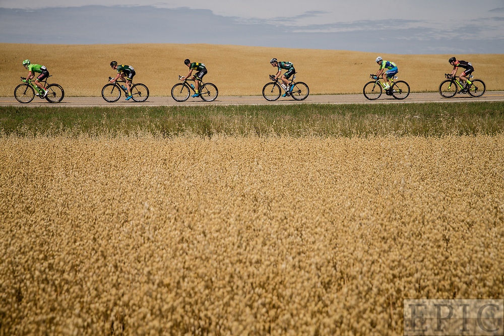 SPRUCE GROVE, ALBERTA, CAN - September 2: Riders pass through the fields out of Spruce Grove during stage 2 of the Tour of Alberta on September 2, 2017 in Spruce Grove, Canada. (Photo by Jonathan Devich)