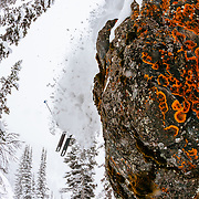 Tanner Flanagan drops a moss covered boulder cliff in the Teton backcountry near Jackson Hole Mountain Resort.