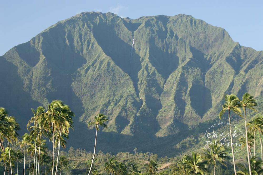 Mountains and palm trees at Hanalei, Kauai