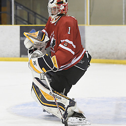 WELLINGTON, - Dec 11, 2015 -  Exhibition Game 2- Team Canada East vs Team USA at the 2015 World Junior A Challenge at the Wellington District Community Centre, ON. Colton Point #1 of Team Canada East makes the save during the first period.<br />