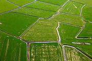 Nederland, Friesland, Gemeente Littenseradeel, 01-05-2013; platteland Friesland: verkaveling en weilanden ten zuiden Jorwerd (Jorwert)<br /> Division of meadows, Frisian countryside.<br /> luchtfoto (toeslag op standard tarieven)<br /> aerial photo (additional fee required)<br /> copyright foto/photo Siebe Swart