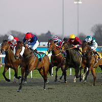 Mr Bounty and David Parkes winning the 6.10 race