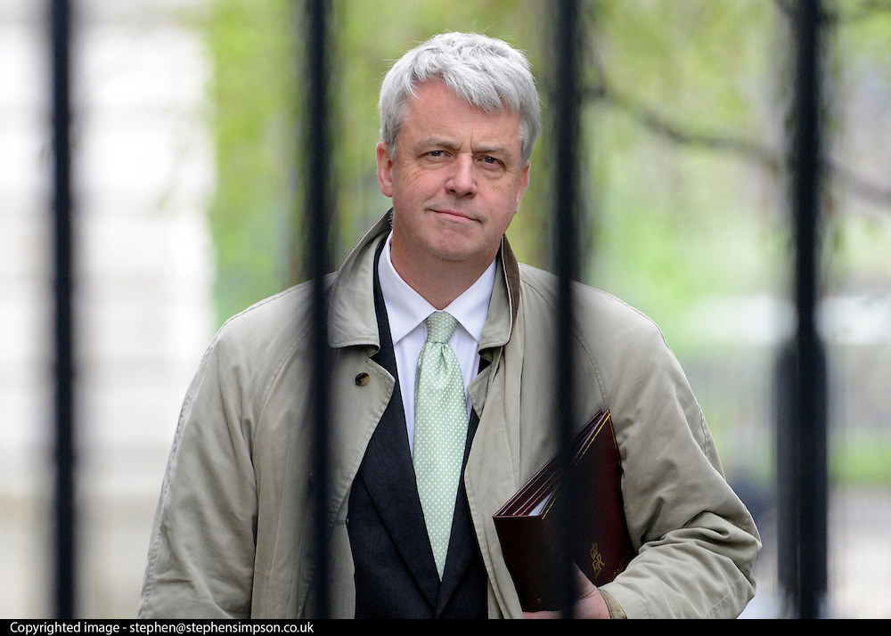 © Licensed to London News Pictures. 01/05/2012. London, UK . Health Secretary Andrew Lansley. Cabinet ministers in Downing Street for the Cabinet Meeting on 1st May 2012. Photo credit : Stephen Simpson/LNP