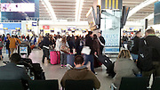 © Licensed to London News Pictures. 06/02/2012, Heathrow, UK. Passengers wait for their flights in Terminal 5. Snow and heavy fog continue to disrupt flights at Heathrow Airport today 6th February 2012. Heavy snow fell over many parts of the South East of the UK over Saturday night.  Photo credit : Stephen Simpson/LNP