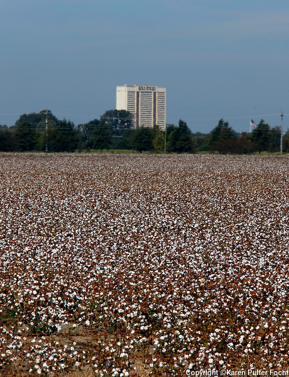 Some southern farmers say low prices for cotton are not worth the cost and effort involved in growing it. In the south, where cotton was once king,  there is now a decline in cotton acreage. The trend began nearly a decade ago. Large amounts of cotton pouring into the world market from China and India. The Casinos (background)  that moved into Tunica, Mississippi are also not thriving as they once were.