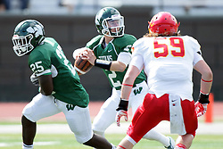 19 September 2015:  Afernee Roberts takes the handoff fake and Jack Warner cocks to throw during an NCAA division 3 football game between the Simpson College Storm and the Illinois Wesleyan Titans in Tucci Stadium on Wilder Field, Bloomington IL