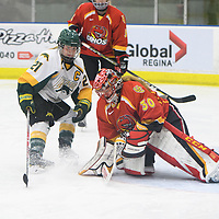 5th year forward Kylee Kupper (21) of the Regina Cougars `in action during the Women's Hockey home game on November 18 at Co-operators arena. Credit: Arthur Ward/Arthur Images
