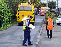 Wellington-Fire destroys five buses at Karori depot
