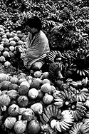 A vendors sits amidst her goods - coconuts, bananas, greens - Rantepao, Sulawesi, Indonesia