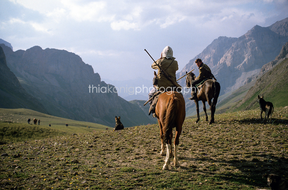 Sheepherders on horseback look to their flock with binoculars, Tien Shan Mountains, Kyrgyzstan, Russia