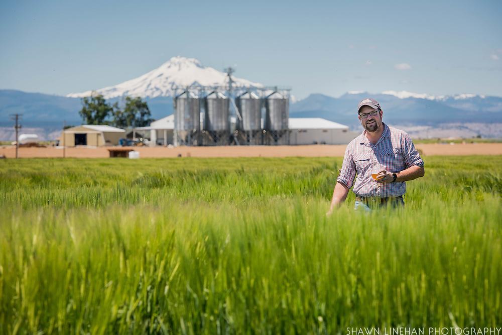 Seth Klann gives a tour through a field of Full Pint Barley at his family farm, Mecca Grade Estate Malt, in Madras, Oregon.