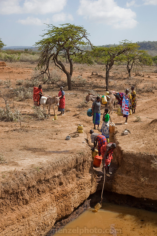 Villagers fetch water from a village-dug waterhole in a Maasai compound, Near Narok, Kenya. Maasai wealth is derived from the cattle owned, the land, and the number of children born to support the family busines, which is cattle and goats.