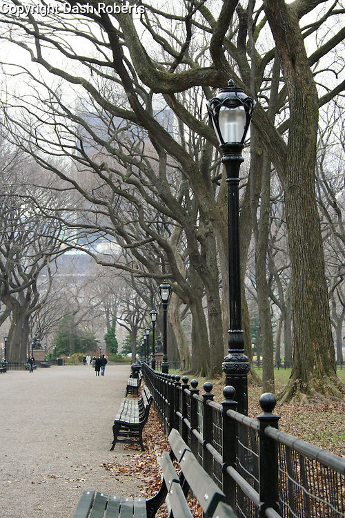 Strolling The Mall on a winter's day in New York City's Central Park.