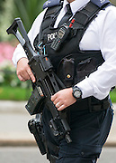 © Licensed to London News Pictures. 03/09/2014. London, UK Armed police officers seen on Downing Street today 3rd September 2014. Photo credit : Stephen Simpson/LNP