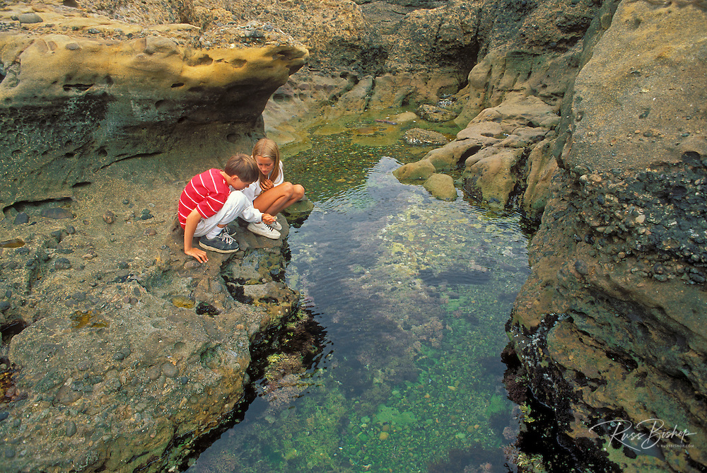 Kids (age 8 & 12) exploring a tide pool at Weston Beach, Point Lobos State Reserve, California USA