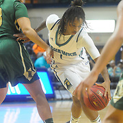 UNCW v William and Mary Women