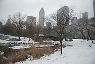 New York. Central park under the snow , the pond and the Gapstow Bridge / Central park  le pond et le pont Gapstow Bridge Central park sous la neige.
