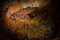 """Les canadiens disent de lui que """"les bons génies de la gourmandise se sont penchés sur son berceau"""". <br /> Les japonais s'arrachent ses créations lors du célèbre salon du chocolat de Tokyo.<br /> Philippe est le petit-fils de Maurice Bernachon, le fondateur de la maison Bernachon, chocolaterie et pâtisserie artisanale lyonnaise connue dans le monde entier. Il serait tombé dans la potion magique gastronomique des son plus jeune age... <br /> """"J'ai la chance d'être l'héritier d'hommes très talentueux, qui ont créé des plats mythiques dont les gens parlent encore comme s'ils dataient d'hier."""" <br /> Il faut dire que son autre grand-père n'est autre que Paul Bocuse... <br /> <br /> Canadians tell him that """"the good spirits of gluttony have looked over his cradle"""" and in Japan his creations sell like hot cakes during the famous Salon du Chocolat Tokyo.<br /> Philippe is the grand-son of Maurice Bernachon, who founded , in 1945 , the house Bernachon, chocolate and pastry shop in Lyon, precisely where it is today.<br /> Successively led by its creator and his son, Jean-Jacques, it's Philippe who is the head of the world famous chocolate factory, now.<br /> He is helped by his two sisters, Candice and Stephanie who are in charge of the shop and the tea room.<br /> It would have fallen into the magic culinary potion when he was again a baby ...<br /> """"I am fortunate to be the heir of very talented men who create the legendary dishes that people still talk as if they were dated yesterday.""""<br /> It must be said that his other grandfather is none other than Paul Bocuse ..."""