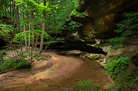 Sandstone overhangs in Old Man's Cave Gorge. Hocking Hills State Park Ohio