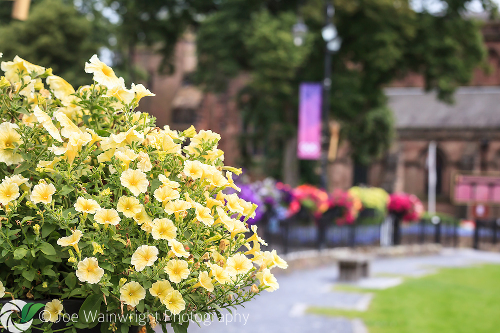 Flowers decorate the railings around the remains of Chester's Roman amphitheatre.