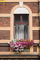 Flower box at window of an old building in Podgorze area of Krakow Poland