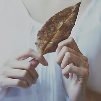 Photograph o a girl holding a dry leaf with both hands