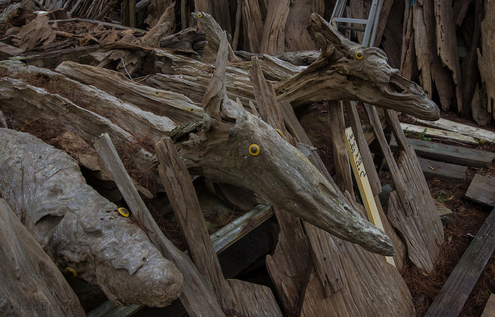 Sculptures by self-taught artist, Adama Morales  at Adam's Cypress Swamp Driftwood Family Museum in Pierre Part, Louisiana.