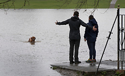 © Licensed to London News Pictures. 02/04/2018. London, UK. A couple watch as their dog plays in rising floodwater at Deer Park next to Richmond Lock.  Heavy rain has caused some flooding in areas near the River Thames in the south. Photo credit: Peter Macdiarmid/LNP