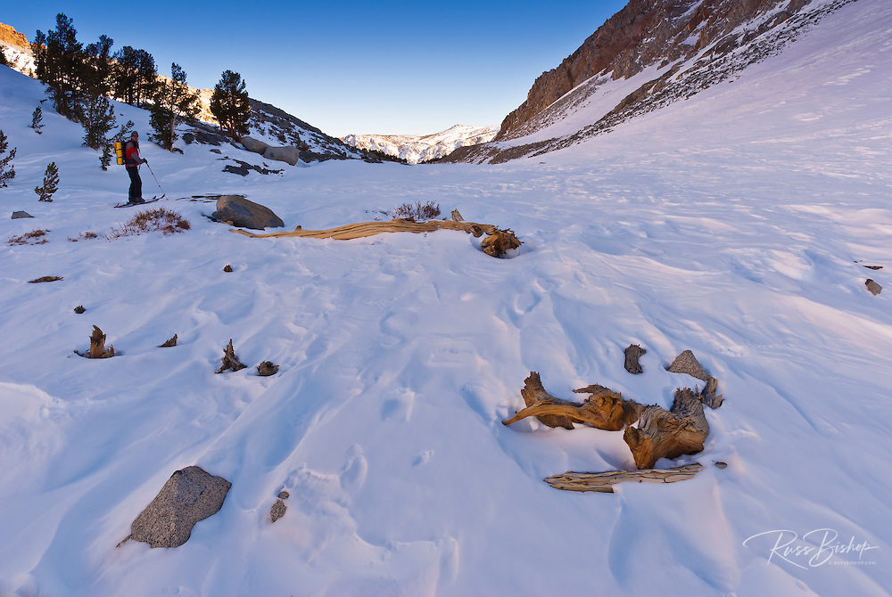 Windswept snow and backcountry skier below Piute Pass, Inyo National Forest, Sierra Nevada Mountains, California